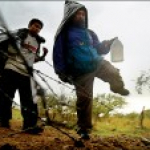 Go Illegal? Legal Immigration versus Illegal Immigration and Amnesty